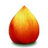 salt lamp drop